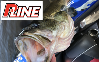 P-Line The Ultimate Fishing Line For Bass Fishing